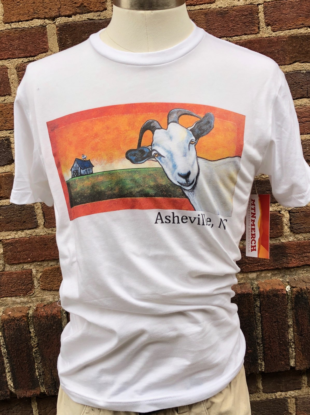 9f251937 Asheville Local Artist T-Shirts - Mountain Merch